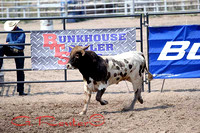 Panhandle Bull Futurity & Riding 8-17-2013 Bridgport Ne