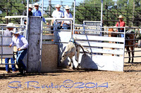 Panhandle Bull Competition & Riding Bridgeport NE 8-16-2014